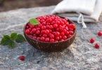 Nanking Cherry